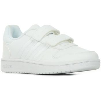 Sapatos Criança Sapatilhas adidas Originals Hoops 2.0 CMF C Branco