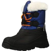 Sapatos Rapaz Botas de neve Kickers 653265 Azul
