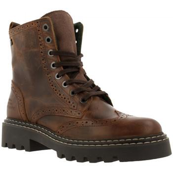 Sapatos Mulher Botins Bullboxer 576m80665a Castanho