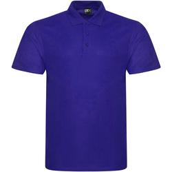 Textil Homem Polos mangas curta Prortx RX101 Púrpura