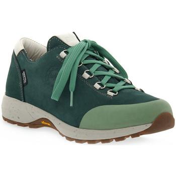 Sapatos Mulher Sapatos de caminhada Lomer BALI MTX PINE Verde