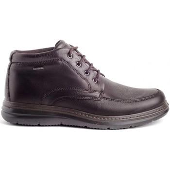 Sapatos Homem Botas baixas Imac 601379 Castanho