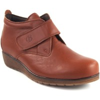Sapatos Mulher Botins Bellatrix 7546 Marrón