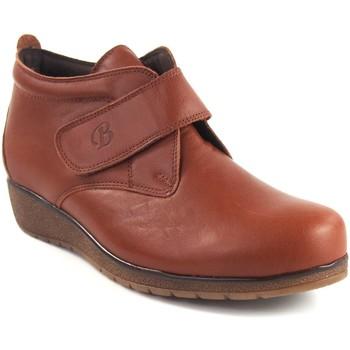 Sapatos Mulher Botins Bellatrix Couro  7546 do  senhora Castanho