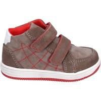 Sapatos Rapaz Sapatilhas de cano-alto Didiblu BK202 Castanho