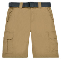 Textil Homem Shorts / Bermudas Columbia SILVER RIDGE II CARGO SHORT Bege