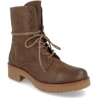 Sapatos Mulher Botins Ainy 4699 Marron