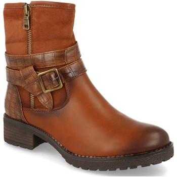 Sapatos Mulher Botins Ainy 267 Camel