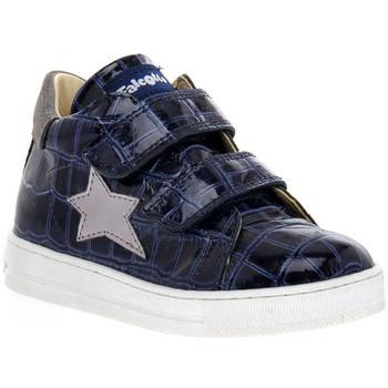 Sapatos Rapariga Sapatilhas Naturino FALCOTTO 2C06 SASHA BLEU Blu