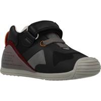 Sapatos Rapaz Sapatilhas Biomecanics 201133 Preto