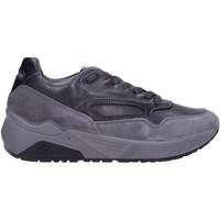 Sapatos Homem Sapatilhas IgI&CO 6142422 Multicolore