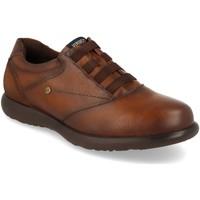 Sapatos Homem Sapatos Virucci 0E1132 Camel