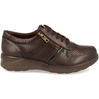Sapatos Mulher Sapatos Virucci VR0-128 Marron