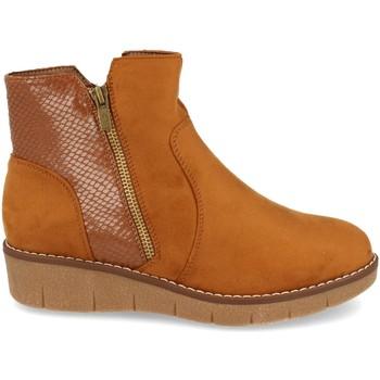 Sapatos Mulher Botins Clowse 9B1111 Camel
