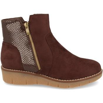 Sapatos Mulher Botins Clowse 9B1111 Marron