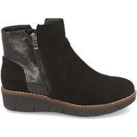 Sapatos Mulher Botins Clowse 9B1111 Negro