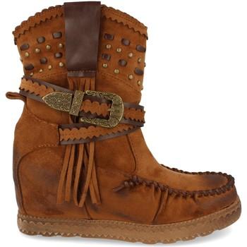 Sapatos Mulher Botins Ainy 9706 Camel