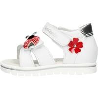 Sapatos Rapariga Botas Nero Giardini E021470F Branco