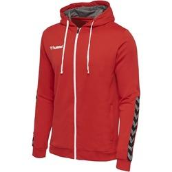 Textil Criança Sweats Hummel Sweatshirt enfant  zip hmlAUTHENTIC Poly rouge