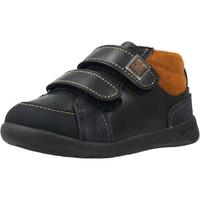 Sapatos Rapaz Sapatilhas Garvalin 201330 Azul