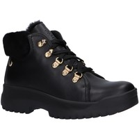 Sapatos Mulher Botas de neve Panama Jack HELLEN B6 Negro