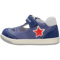 Sapatos Rapaz Sapatos Balocchi - Occhio di bue blu 103222 BLU