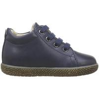 Sapatos Rapaz Sapatilhas Falcotto - Polacchino blu ANEMONE-0C02 BLU