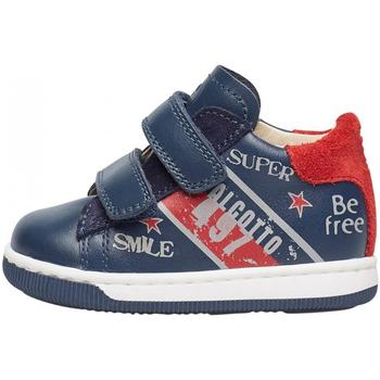 Sapatos Rapaz Sapatilhas Falcotto - Polacchino blu GRUNDY VL-1C23 BLU