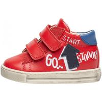 Sapatos Rapaz Sapatilhas Falcotto - Polacchino rosso/azz/blu HOGWA-1H02 ROSSO