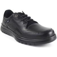 Sapatos Homem Sapatilhas Baerchi Sapato cavaleiro  5056 preto Noir