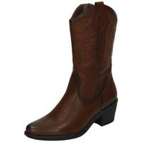 Sapatos Mulher Botas B&w  Castanho
