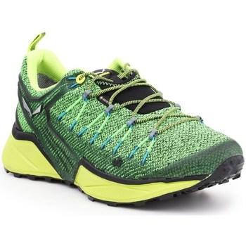 Sapatos Homem Sapatilhas Salewa MS Dropline Gtx Verde claro,Verde