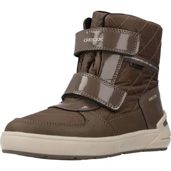 Sapatos Rapariga Botas de neve Geox J SLEIGH GIRL Marron
