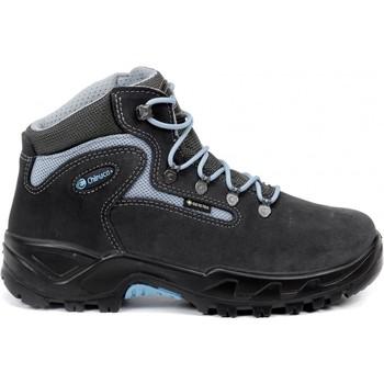 Sapatos Homem Sapatos de caminhada Chiruca Botas  Massana 23 Gore-Tex Cinza