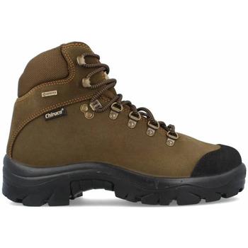 Sapatos Homem Sapatos de caminhada Chiruca Botas  Pointer Force 21 Gore-Tex Verde