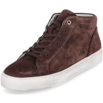 Sapatos Homem Sapatilhas de cano-alto Sioux 38192 Castanho