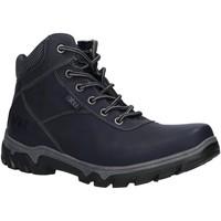 Sapatos Mulher Sapatos de caminhada Xti 49252 Azul