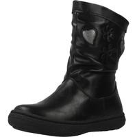 Sapatos Rapariga Botas Chicco COLETTA Preto