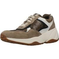 Sapatos Mulher Sapatilhas Gioseppo MELEUZ Marron