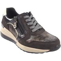 Sapatos Mulher Sapatilhas Amarpies Sapato de senhora  18700 ré marrom Castanho