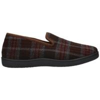 Sapatos Homem Chinelos Roal 12010 Hombre Marron marron