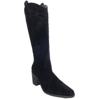 Sapatos Mulher Botas Prisska TY1067 Negro