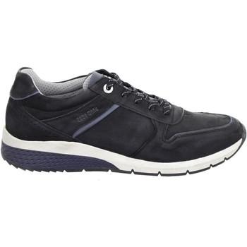Sapatos Homem Sapatilhas Salamander Tonjo Black Black