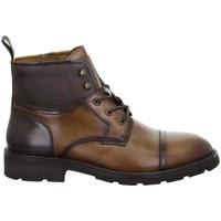 Sapatos Homem Botas baixas Salamander Modena Tan Brown Brown