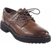 Sapatos Mulher Sapatos D'angela Sapato de senhora  18127 marrom drb Castanho
