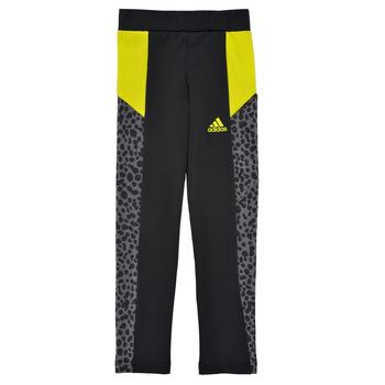 Textil Rapariga Collants adidas Performance G LEO TIG Preto