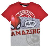 Textil Rapaz T-Shirt mangas curtas Desigual 21SBTK08-3005 Multicolor