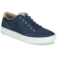 Sapatos Homem Sapatilhas Timberland ADV 2.0 GREEN KNIT OX Azul