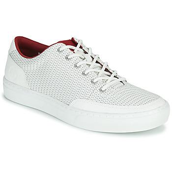 Sapatos Homem Sapatilhas Timberland ADV 2.0 GREEN KNIT OX Branco