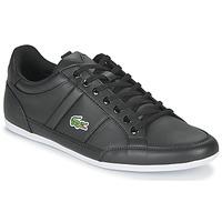 Sapatos Homem Sapatilhas Lacoste CHAYMON BL21 1 CMA Preto